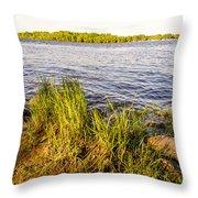 Young Reeds  Throw Pillow