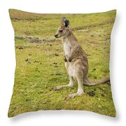 Young Roo Throw Pillow