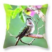 Young Ruby - 6761- 8x10 Throw Pillow
