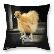 Young Silkie Throw Pillow