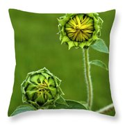 Young Sunflowers Throw Pillow