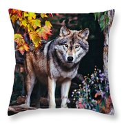 Young Timber Wolf Throw Pillow