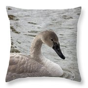 Young Trumpeter Throw Pillow