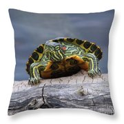 Young Turtle Throw Pillow