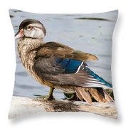 Young Wood Duck Throw Pillow