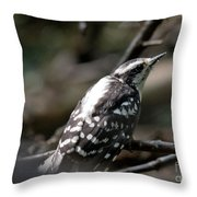Young Woodpecker Throw Pillow