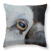 Your Friendly Neighborhood Goat 2 Throw Pillow