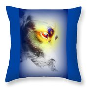 I Love Your Look And You Love To Look At Me     Throw Pillow