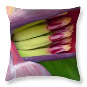 Your Treasure - Mai'a Maoli - Tropical Hawaiian Banana Flower  Throw Pillow