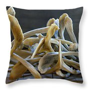 Your Wishes Await Throw Pillow