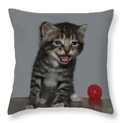 You're Funny Throw Pillow