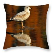 Youthful Reflections Throw Pillow