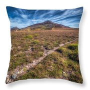 Yr Eifl Trail Throw Pillow by Adrian Evans