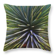 Yucca At The Arboretum Throw Pillow