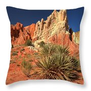 Yucca Badlands And Colors Throw Pillow