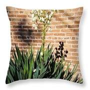 Yucca In The Morning Throw Pillow