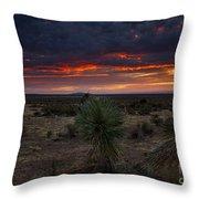 Yucca Sunset Throw Pillow
