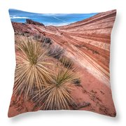 Yucca Valley Throw Pillow