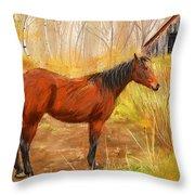Yuma- Stunning Horse In Autumn Throw Pillow