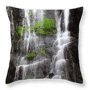 Yungas Waterfall Detail Throw Pillow