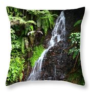 Yungas Waterfall Throw Pillow