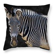 Z Is For Zebra Throw Pillow