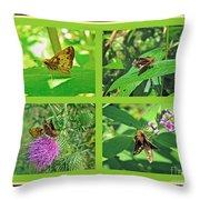 Zabulon Skipper Butterfly - Poanes Zabulon Throw Pillow