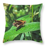 Zabulon Skipper Butterfly - Poanes Zabulon - Female Throw Pillow
