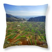 Zafarralla From The Air Throw Pillow