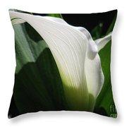 Zantedeschia Named Crystal Blush Throw Pillow