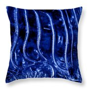 Zebra Abstract Throw Pillow