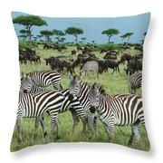 Zebra And Wildebeest Grazing Masai Mara Throw Pillow