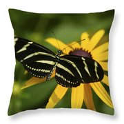 Zebra Butterfly Throw Pillow