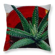 Zebra Cactus In Red Glass Throw Pillow