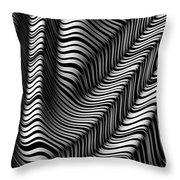 Zebra Folds Throw Pillow