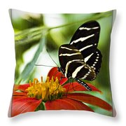 Zebra Longwing 2 Throw Pillow