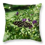 Zebra Longwing Butterfly On Flower Throw Pillow