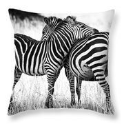 Zebra Love Throw Pillow by Adam Romanowicz
