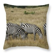 Zebra On Masai Mara Plains Throw Pillow