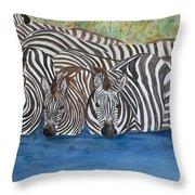Zebra Pool Throw Pillow