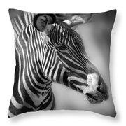 Zebra Profile In Black And White Throw Pillow