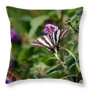 Zebra Swallowtail Butterfly In Garden Throw Pillow