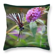 Zebra Swallowtail Butterfly On Butterfly Bush  Throw Pillow
