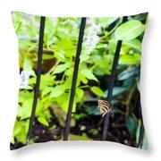 Zebra V Throw Pillow