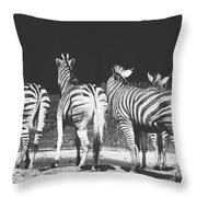 Zebras From Behind Throw Pillow