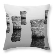 Zed Black And White Throw Pillow