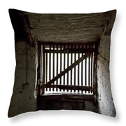 Zee Stable Door Throw Pillow