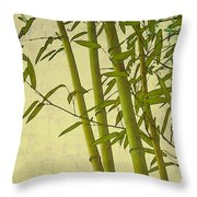 Zen Bamboo Abstract I Throw Pillow