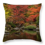 Zen Garden Reflected Throw Pillow