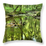 Zen In The Forest Throw Pillow by Adam Jewell